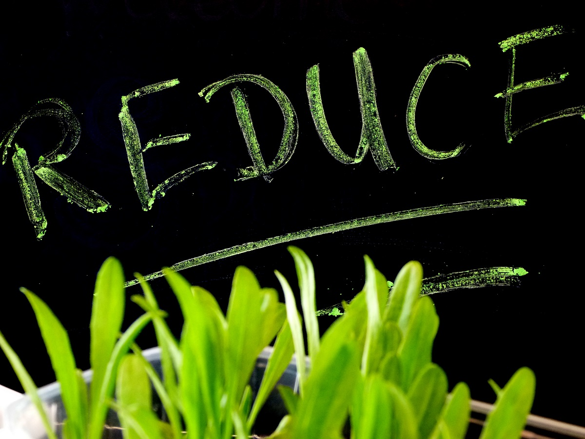 Reduce - Earth Day 2015